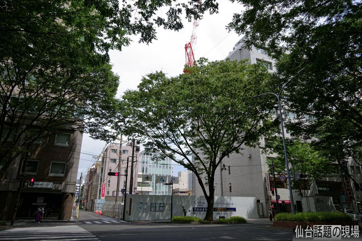 エリア 通 青葉 タワー シ 仙台